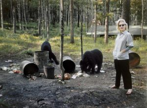 Marilyn Monroe with black bears in Canada,